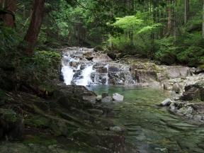 田立の滝 そうめん滝