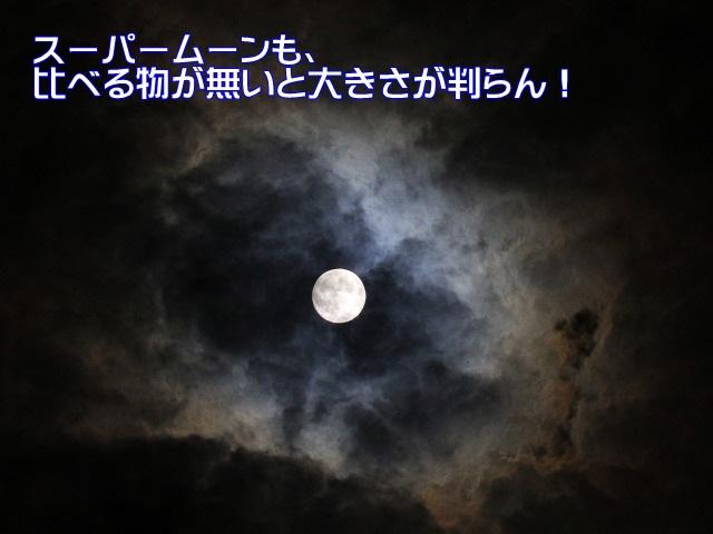 2IMG_7126.jpg
