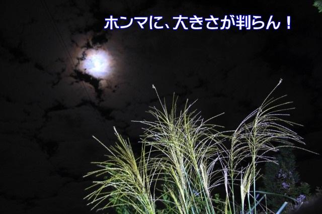 2IMG_7143_2015092821331988c.jpg