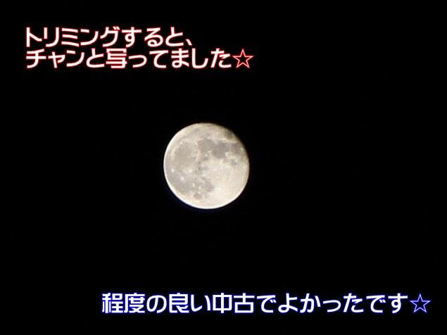 2IMG_7194.jpg
