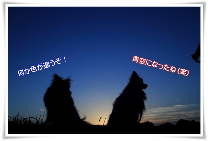 2IMG_7405.jpg