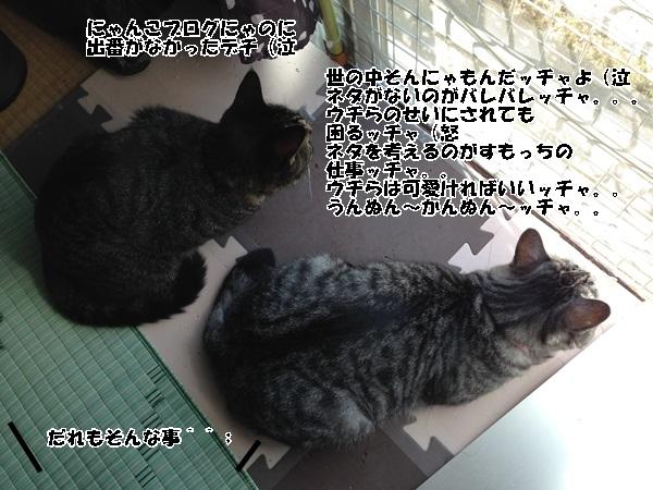 IMG_9544.jpg