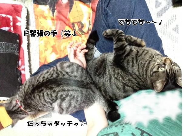IMG_9620.jpg