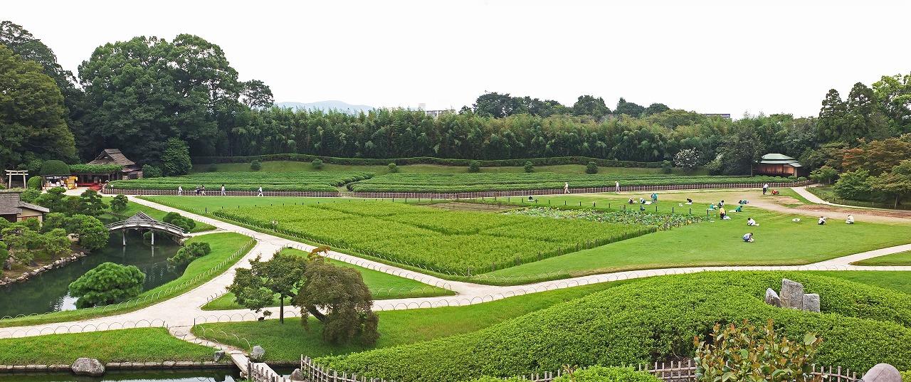 s-20150903 後楽園唯心山頂上から見た今日の庭園ビアガーデン跡のワイド風景 (1)
