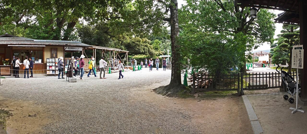 s-20151005 後楽園今日の園内菊花展の準備ワイド風景 (1)