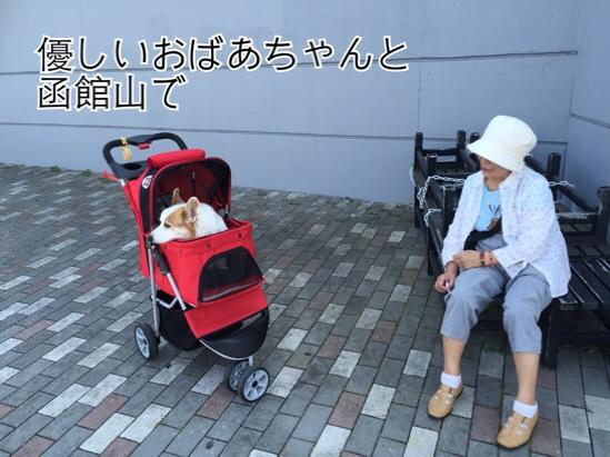 fc2blog_201508272320458bd.jpg