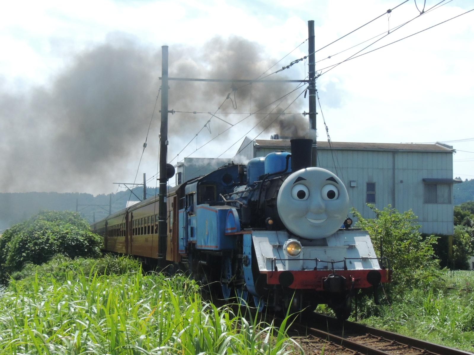 大井川鉄道SLトーマス号 新金谷~青山町 (4)