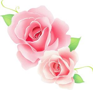 flower023900.jpg