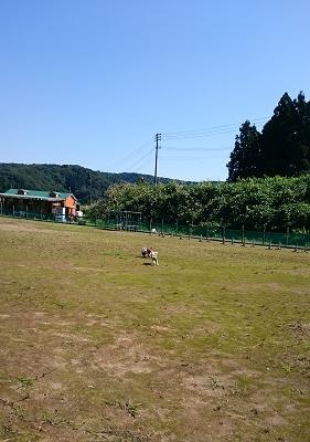DSC_0337-9.jpg