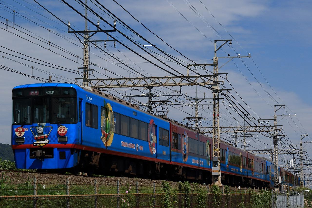 MP4A8967.jpg