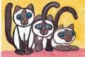 3シャム猫 (1)