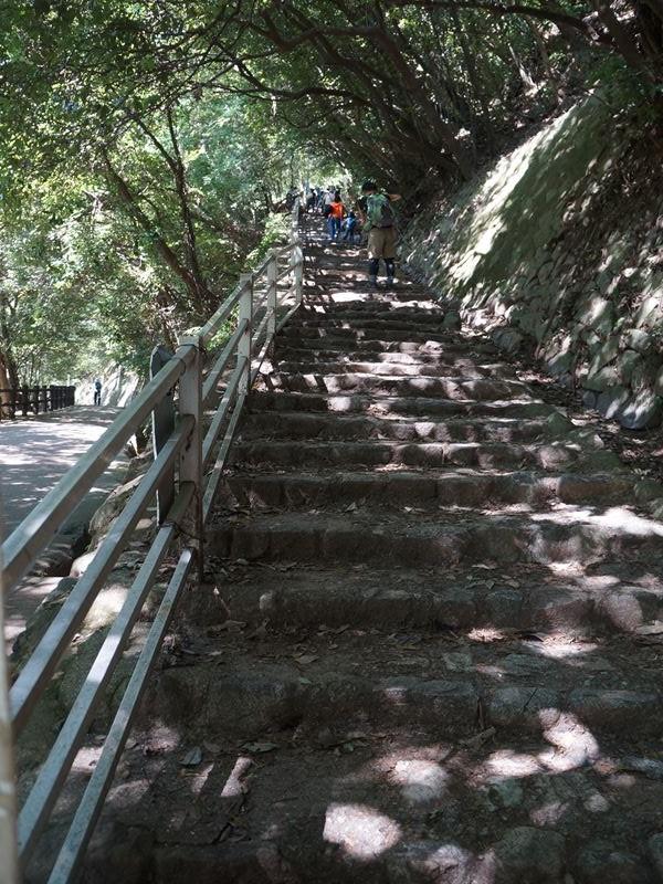 滝の道中の坂