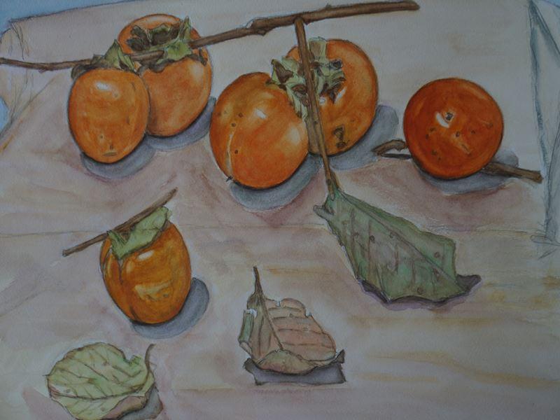 柿の水彩画