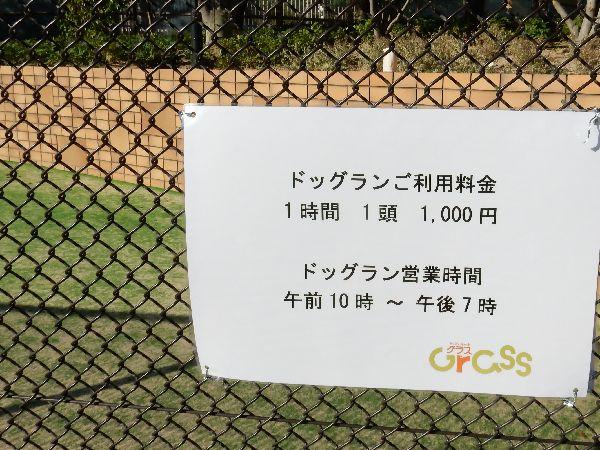 20151009 (13)