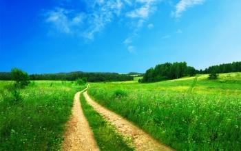 空と草原続く道