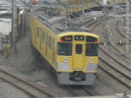 CIMG3065-1.jpg