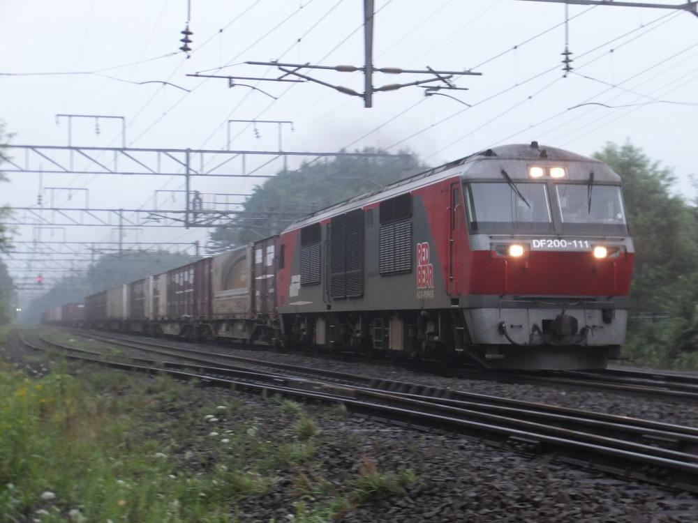 s_DSCF19965.jpg