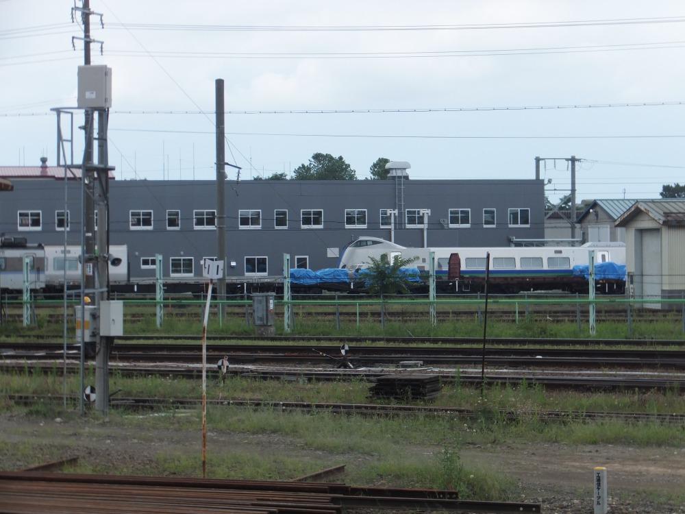 s_DSCF20029.jpg