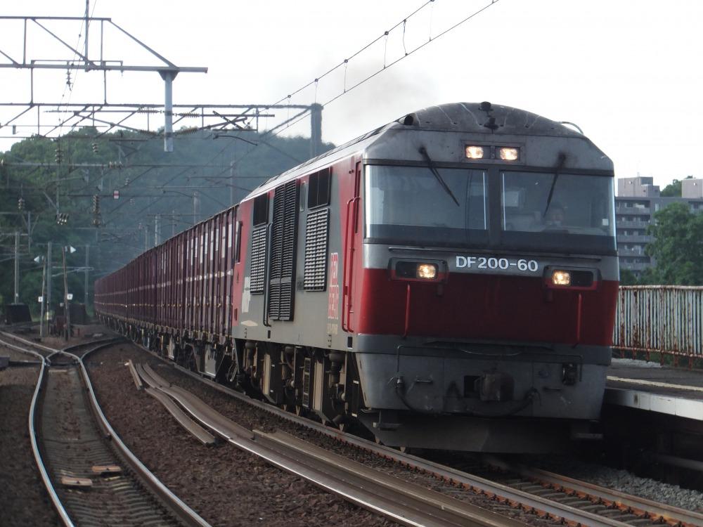s_DSCF20111.jpg
