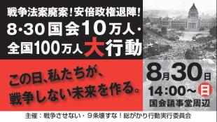デモ 8月30日 国会