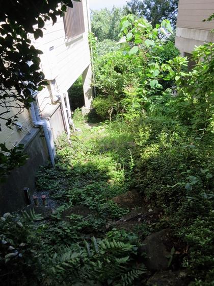 脇の階段(前)1
