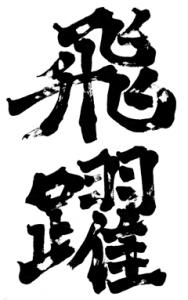 hiyaku1.png