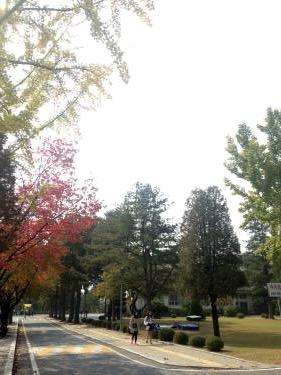 初めて訪れたソウル科学技術大学