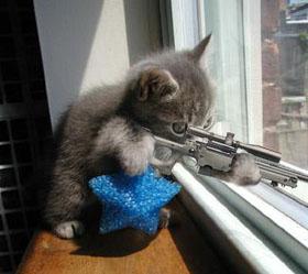 sniper cat 5