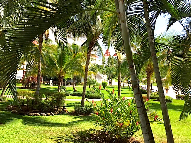 jamaicatour62.jpg