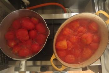 トマト煮つめています
