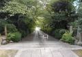 春は桜のトンネルに