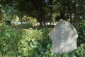 万葉の並木道の石碑