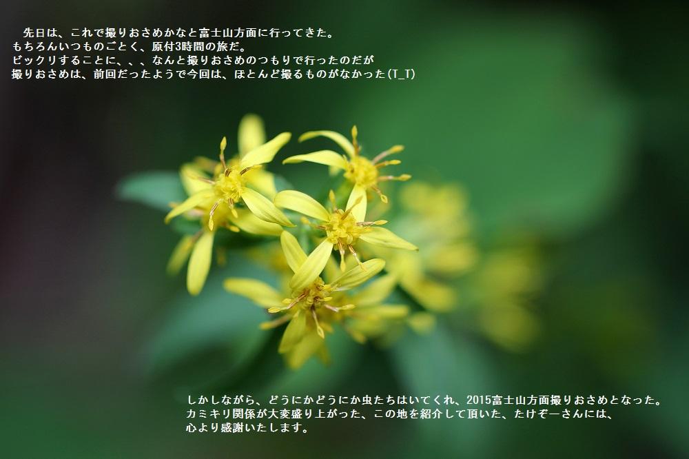 FC2-4063_1bv
