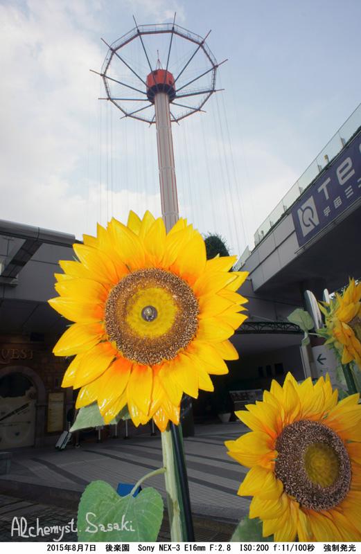 造花の向日葵DSC03478