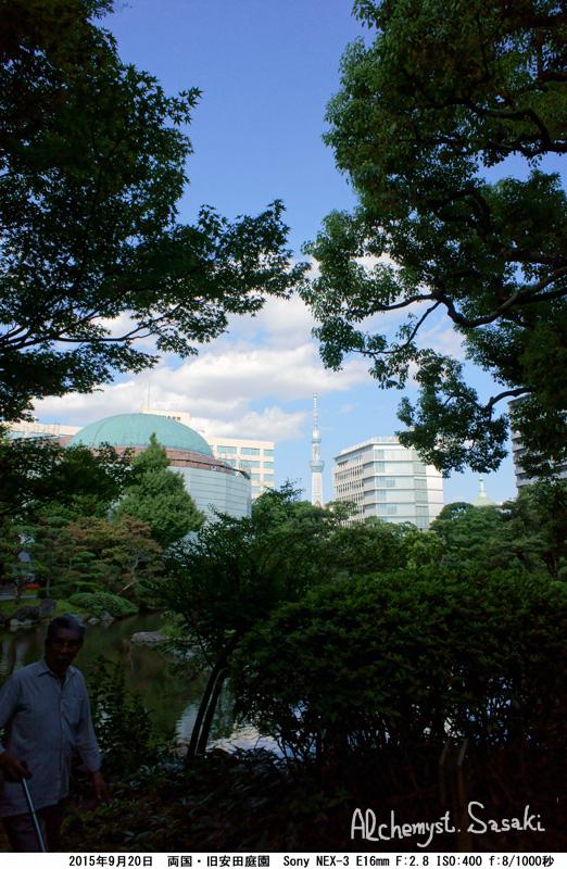 旧安田庭園DSC04096