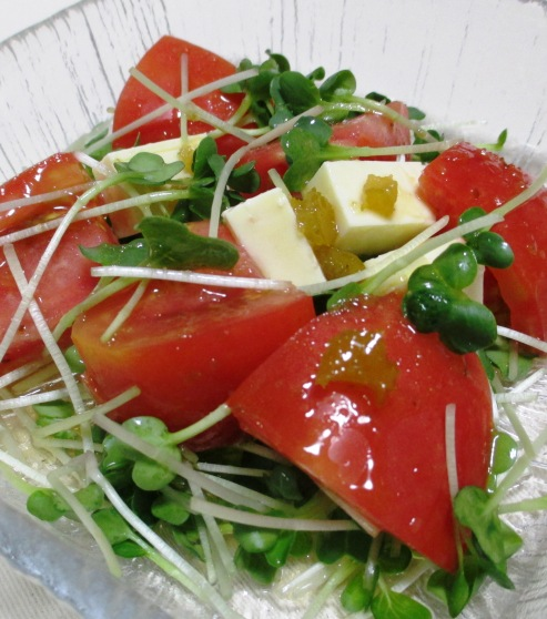 カイワレトマト B