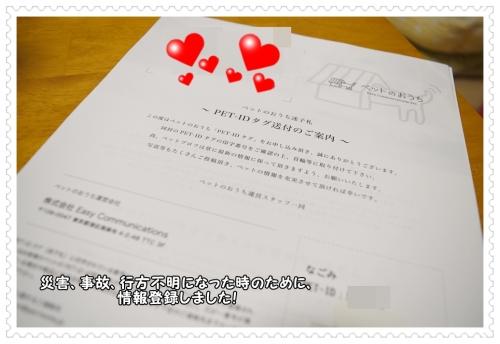 DSC_0118 1008