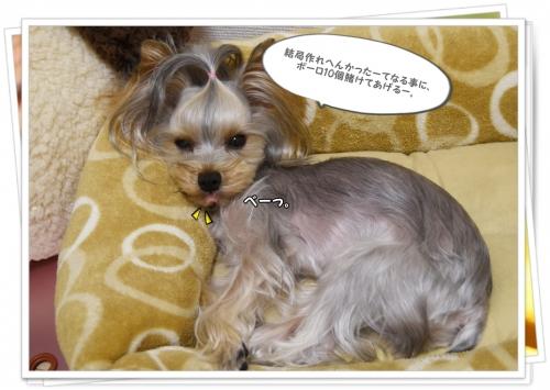 DSC_00191010.jpg