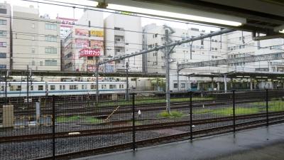 P1040165.jpg