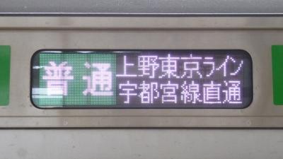 P1040169.jpg