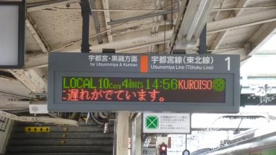 P1040173.jpg
