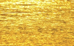 Golden-Sea.jpg