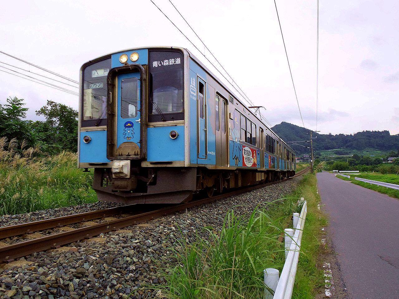 IMGP6665.jpg