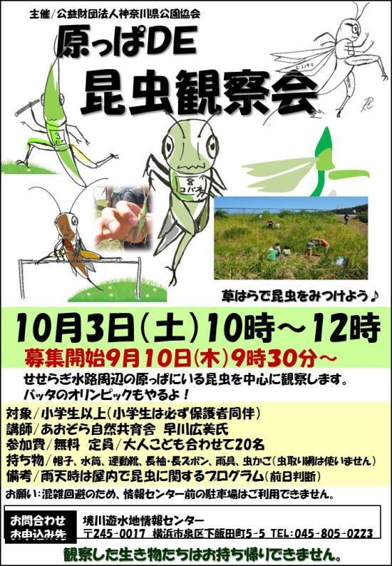 15103+昆虫観察会ポスター_convert_20150923123847