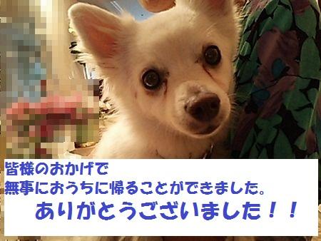 20151014_1852169.jpg