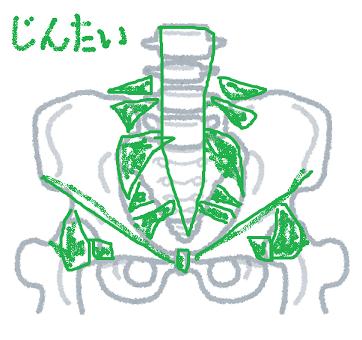 body_kotsuban_white[1] - コピー (2)