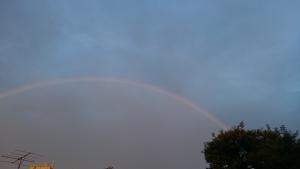虹をかけろ