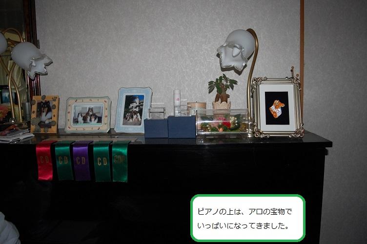 takara03.jpg