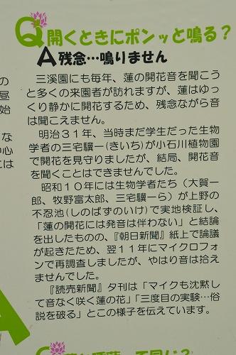 DSC_3899.jpg