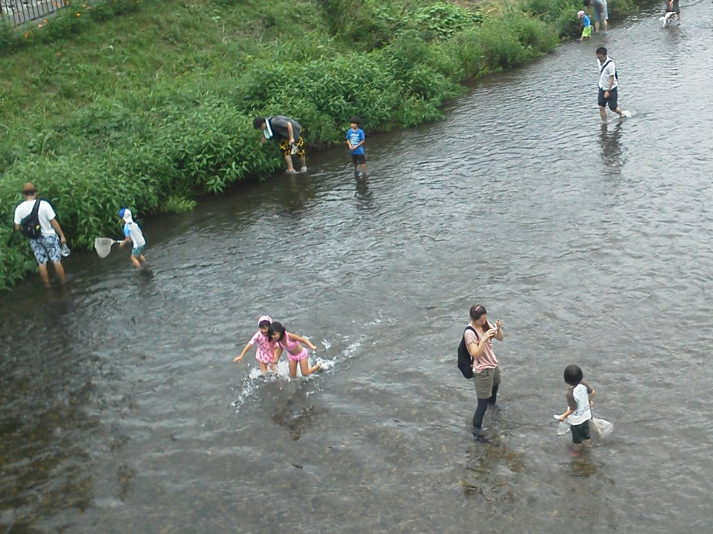 F1001312第20回黒目川川祭り